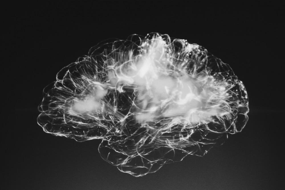 brain. Alina Grubnyak unsplash