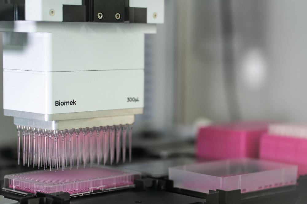 המעבדה של פרופ' נחמיאס. צילום: דניאל חנוך