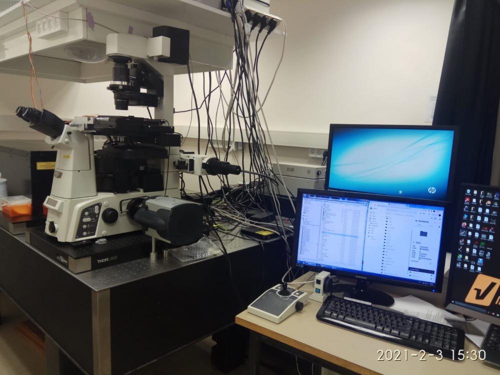 המיקרוסקופ שבו השתמש פרופ אילון שרמן. קרדיט צילום - באדיבות דוברות האוניברסיטה העברית