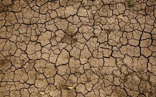 drought. Mike Erskine, unsplash