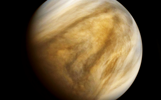 Venus by Pablo Carlos Budassi